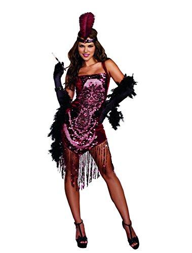 Dreamgirl Women's Sexy 1920's Flapper Costume, Gatsby Girl